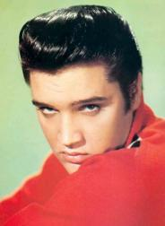 protrait of Elvis in red